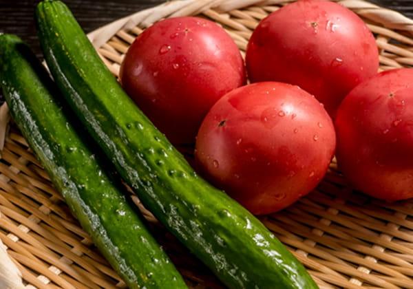 鮮度第一のフレッシュな野菜