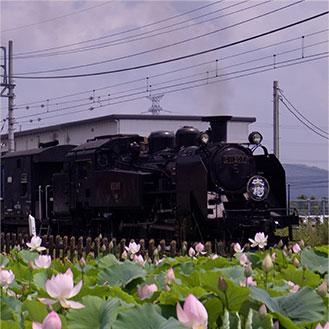 東武鉄道SL 大樹